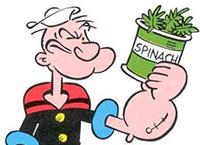 Spinazie is bron van ijzer - Popeye