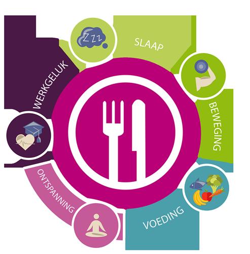 Schijf van vijf - gezonde voeding & leefstijl voor werknemers - Enerjoy